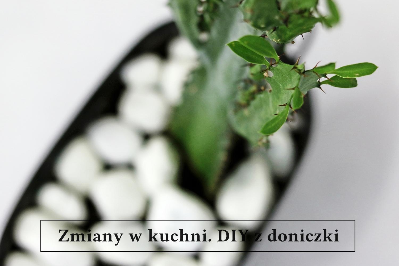 Baba Ma Dom Zmiany W Kuchni Diy Z Doniczki