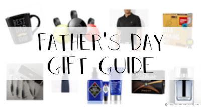 Father's Day (under $100) Gift Guide