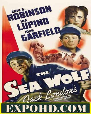 The Sea Wolf 1941 IMDb 480p | BluRAy 720p | Esub 980Mbs [Watch & Download Here]