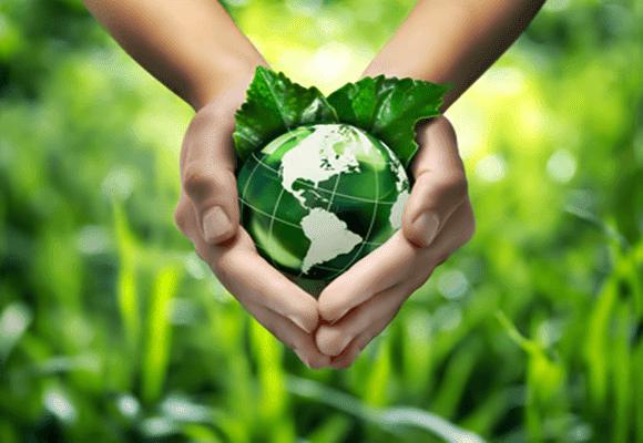 Ecologia-atitude