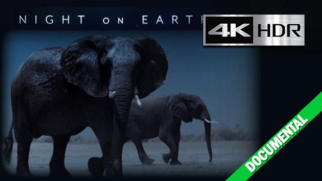La Tierra de noche (2020) Temporada 1 Web-DL 1080p [HDR] Latino-Castellano-Ingles