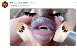 इस मछली के इंसानों की तरह हैं होंठ और दांत, नाम है ट्राइगरफिश | #NayaSabera