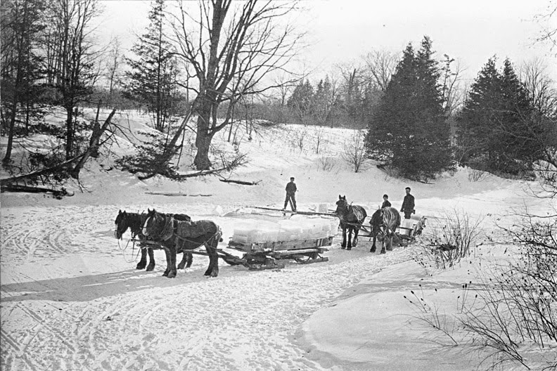Ice Cutters in Toronto, Canada, 1890's, Courtesy of wikipedia.com