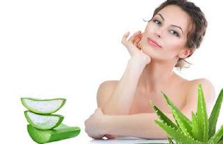 Benefits Of Aloe Vera Beauty