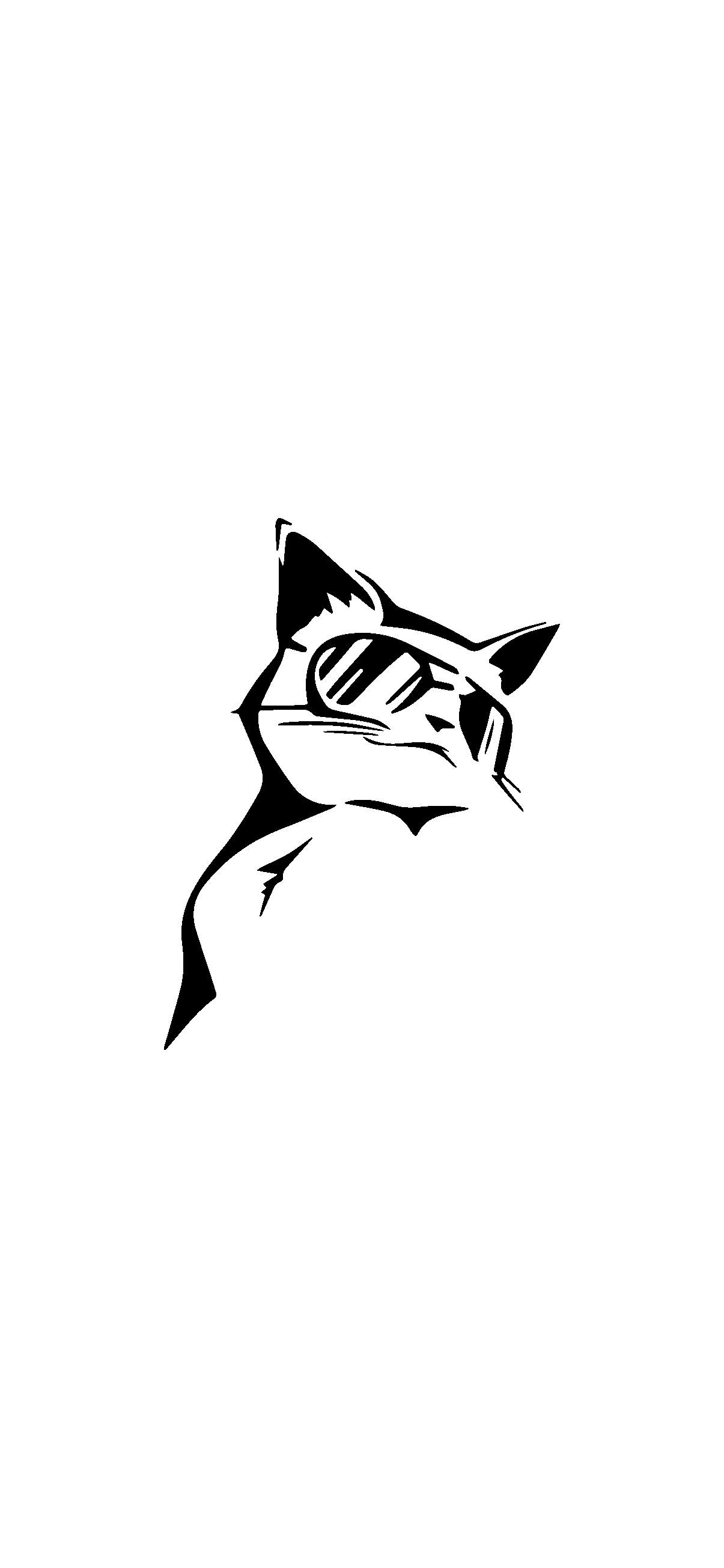 bw-cat-white-background