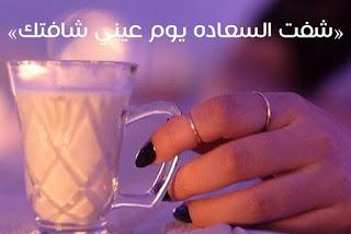 رواية شفت السعادة يوم عيني شافتك للكاتبة وعد