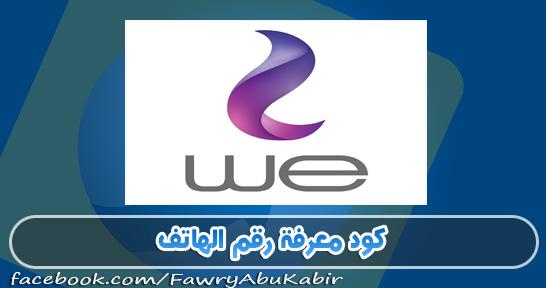 كود معرفة رقم خط شبكة وي We المصرية للاتصالات