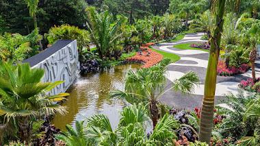 El arte vivo de Burle Marx en Brasil y en el Jardín Botánico de Nueva York
