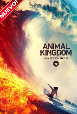 Animal Kingdom (Serie de TV) S04 CustomHD NTSC Sub 4xDVD