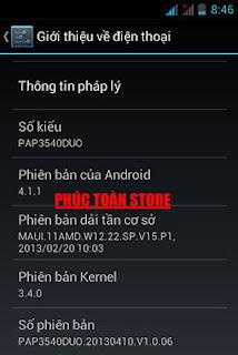 Tiếng Việt PAP3540DUO 4.1.1 alt