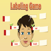 Body Parts Labeling