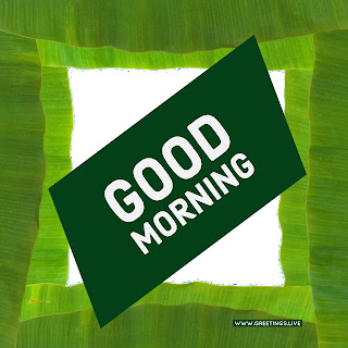Good morning greetings from greetings live.jpg
