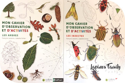 cahiers observation et activite arbres insectes