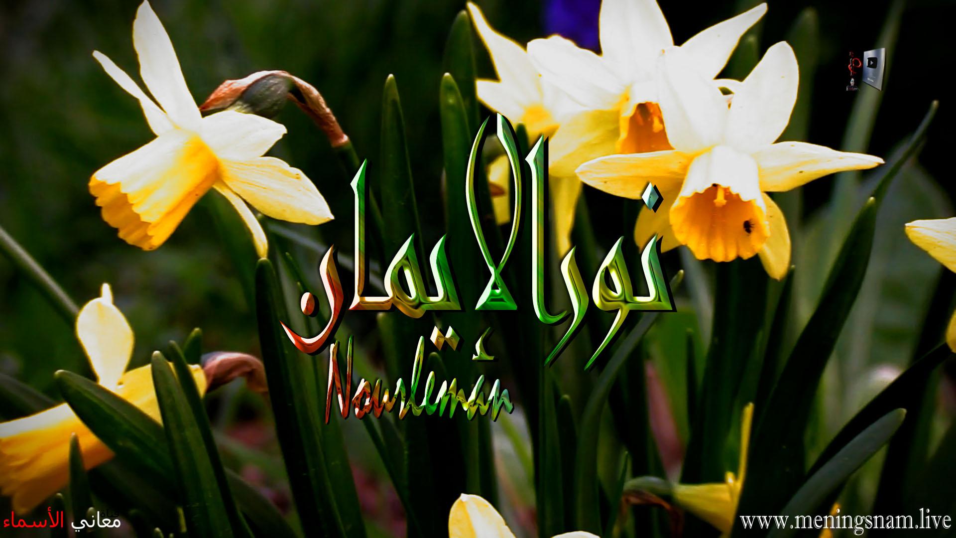 معنى اسم نور الايمان وصفات حاملة و حامل هذا لاسم Nour Aleman