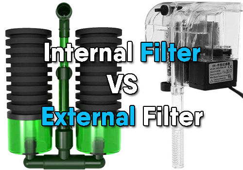 Internal filter versus external filter