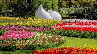 Cómo se diseña el jardín de tulipanes más grande del mundo: Keukenhof entre bastidores