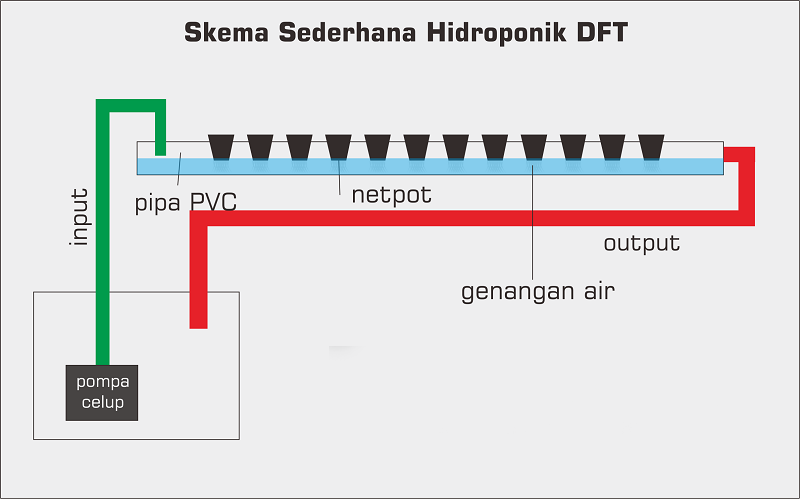 Mengenal Sistem Tanam Hidroponik Wick Nft Dan Dft Khusus Pemula