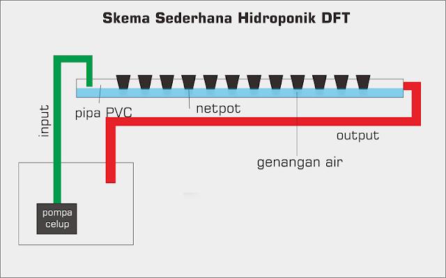 Di dunia hidroponik terus terang saya pemula Mengenal sistem tanam hidroponik (Wick, NFT dan DFT) Khusus Pemula