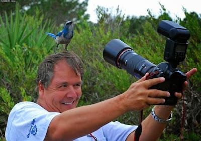 hombre comparte su foto con un pájaro parado en su cabeza
