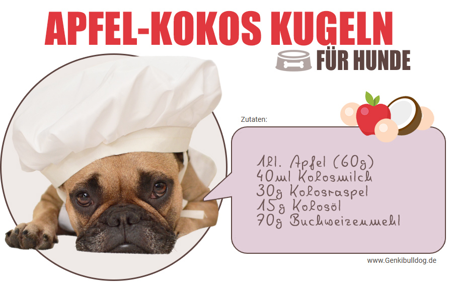 Hundekekse selbst backen Apfel-Kokos Kugeln für Hunde Rezept