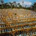 Brasil registra mais 34.130 infecções e 514 mortes pela Covid-19