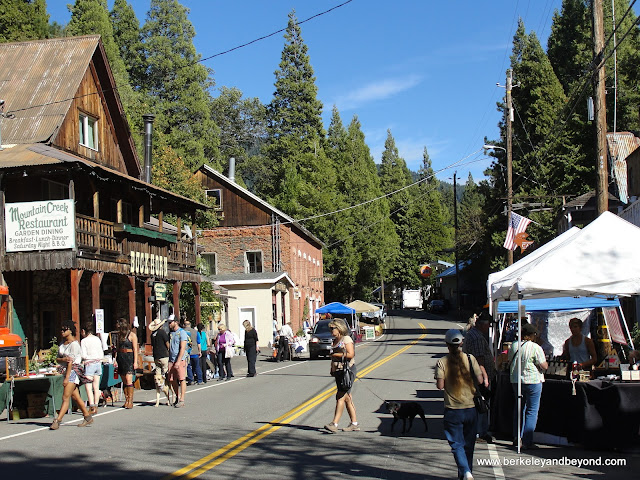 street vendors at Oktoberfest Festival in Sierra City, California