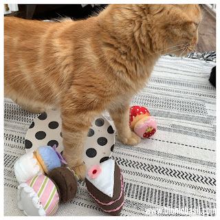 Fudge's Tea Pawty Got Out Of Paw at BBHQ @BionicBasil® on The Sunday Selfies