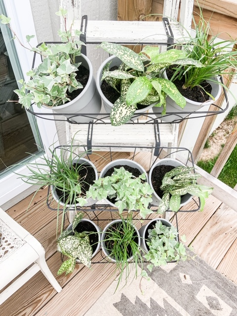Baskets on a ladder to hold plants outside