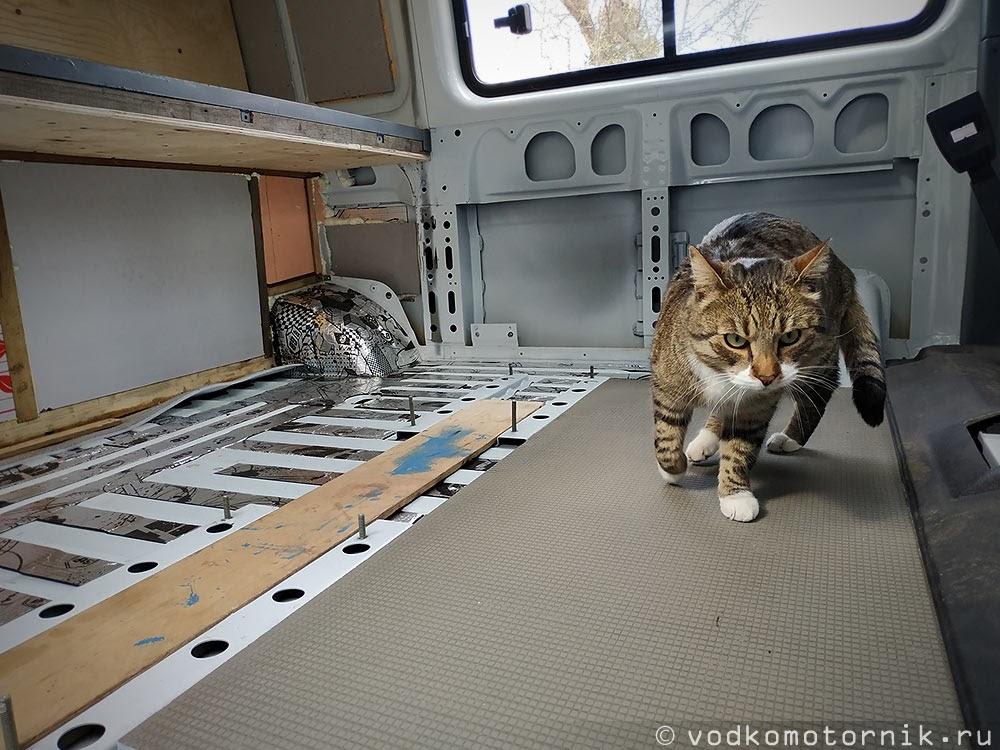 Кот Шмель проверяет прочность плиты RP 10 мм.