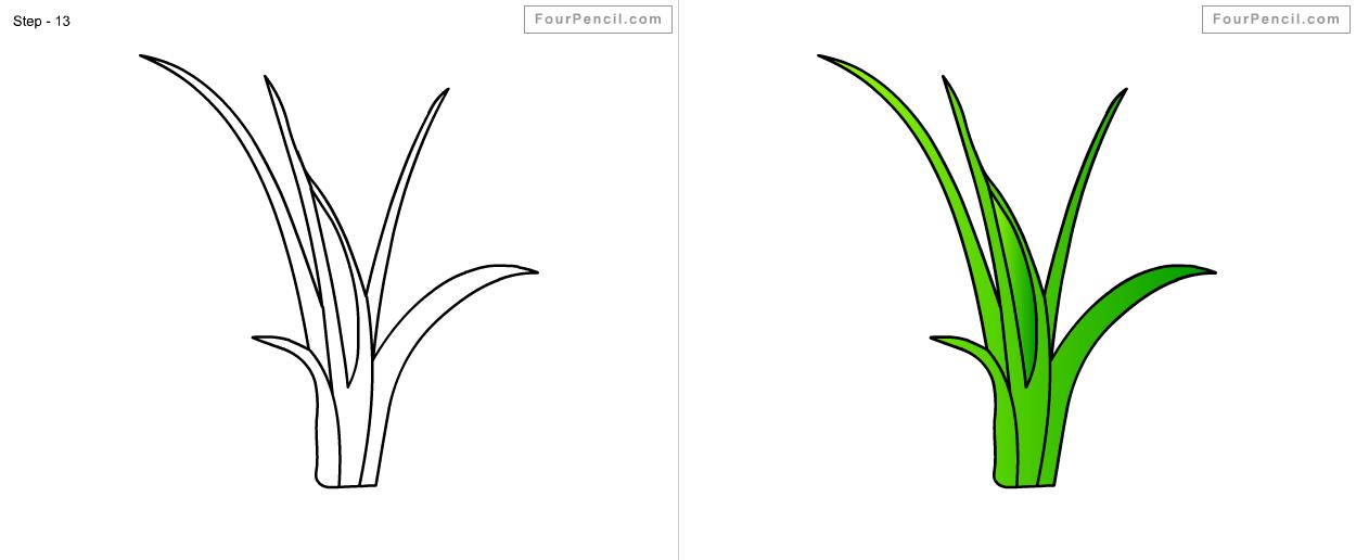 Marsh Grass Drawing