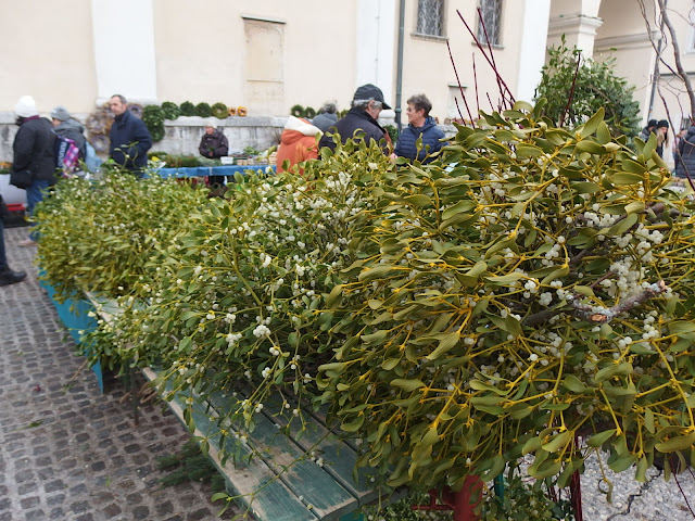 Lots of mistletoe for sale at the market in Ljubljana