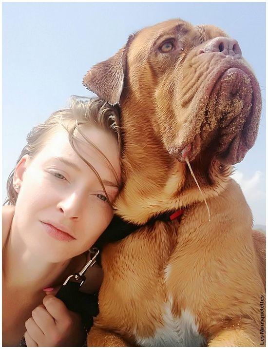 Gros bébé Dogue de Bordeaux en mode plage (pour chien^^)