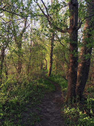 Ice Age National Trail - East Lodi Marsh Segment