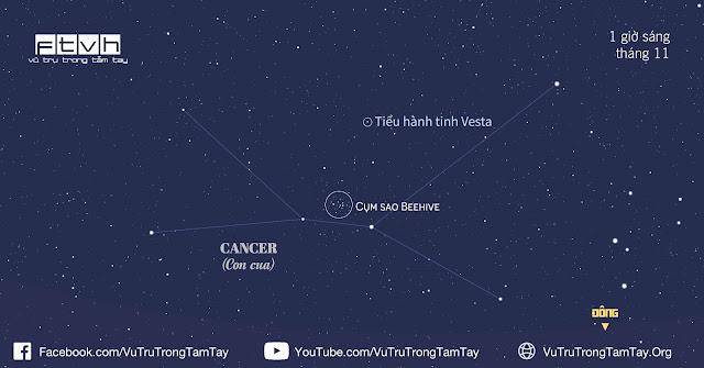 Cụm sao Beehive trong chòm sao Cancer sẽ mọc lên bầu trời hướng đông từ sau nửa đêm. Bạn hãy quét ống nhòm hoặc kính thiên văn qua khu vực này để tìm ra cho mình tiểu hành tinh Vesta.