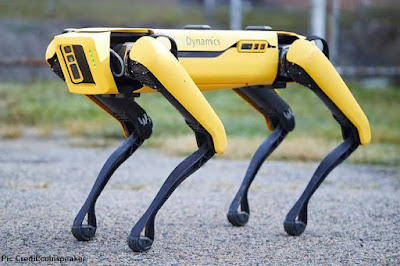 Exploring-Boston-police-tests-of-dog-robots