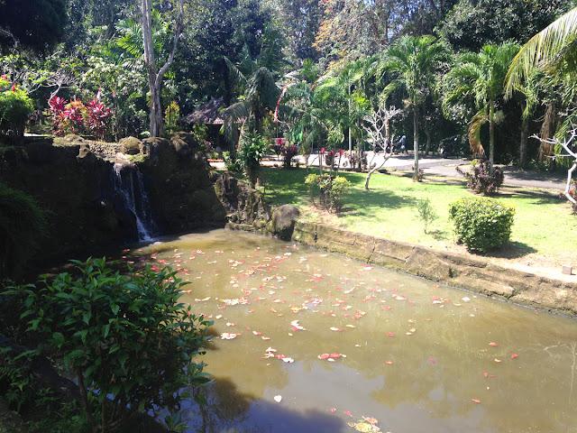 博物館の敷地内にある池