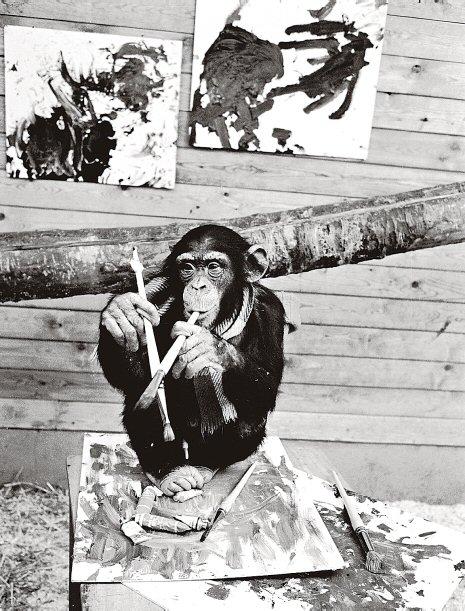 Pierre Brassau, el artista que resultó ser un mono