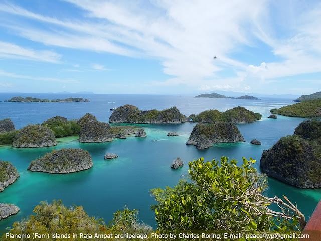 Pemandangan alam Piaynemo Karst di Raja Ampat Indonesia