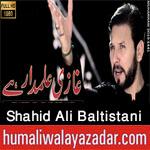 https://www.humaliwalayazadar.com/2016/08/shahid-ali-baltistani-nohay-2013-to-2017.html