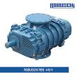 Máy thổi khí robuschi RBS 46/V