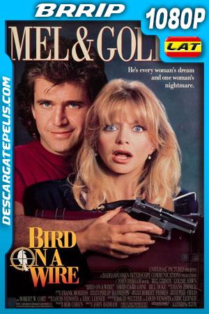 Tiro al blanco (1990) BRrip Latino – Ingles