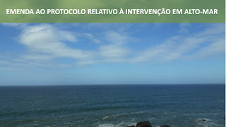 Direito Ambiental Internacional Intervenção em Alto Mar