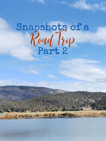 Our Reno - Las Vegas road trip was a big success and we had a great time. There's so much to see and do if you know where to look.