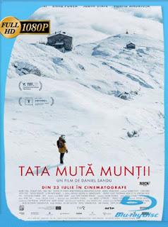 El padre que mueve montañas (2021) HD [1080p] Latino [GoogleDrive] PGD