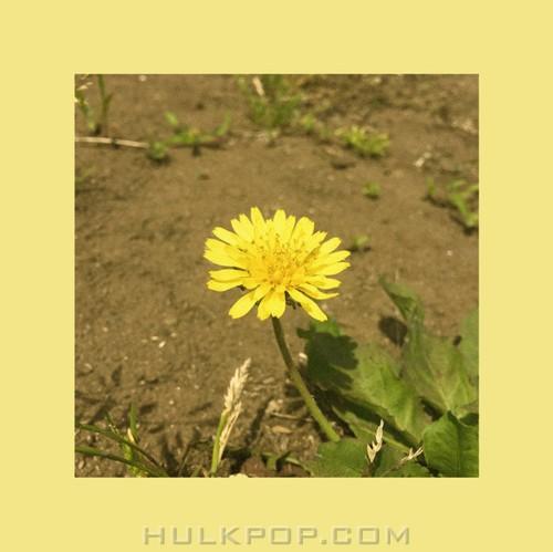 OOHYO – Dandelion – Single (ITUNES MATCH AAC M4A)