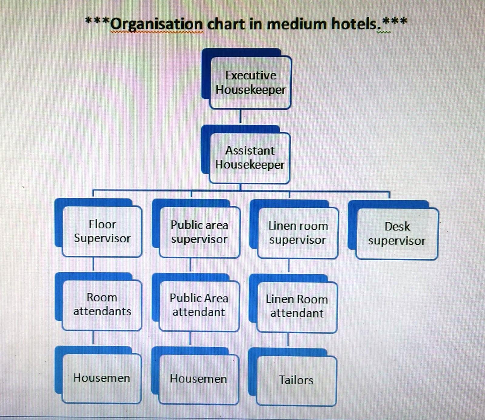 Organization chart of housekeeping department also hkfirstsem rh hknotesfirstsemspot
