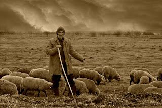 El hombre y la oveja de Godofredo Daireaux