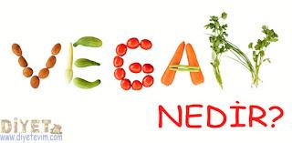 vegan beslenme hakkında bilgi