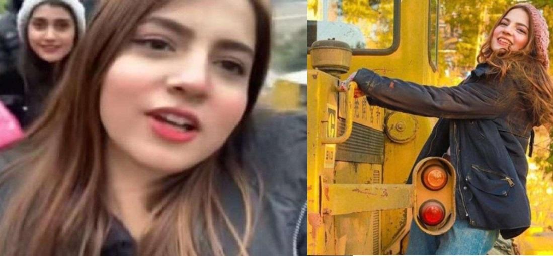 "Who is Dananeer Mobeen? ""The Pawri HoRai Hai viral video girl"""