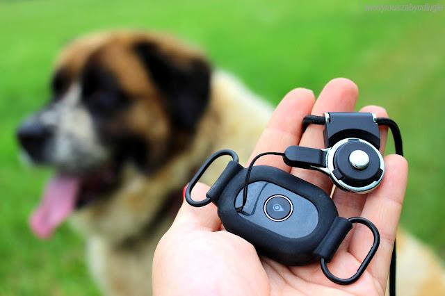 Bezpieczny dom i bezpieczny pupil – lokalizator GPS oraz kamera do monitoringu domu LOCON. – KONKURS dla Was! Do wygrania SMARTWATCH GPS o wartości 299 zł !